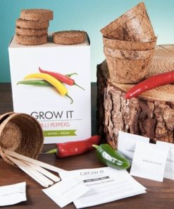 Grow it – chilli papričky