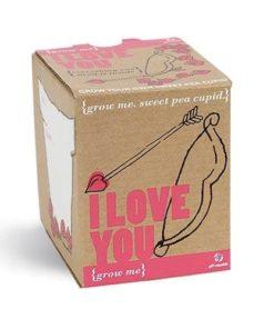Originální dárek na Valentýna Grow me - miluji Tě