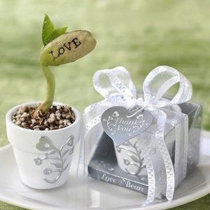 Kouzelná fazolka LOVE