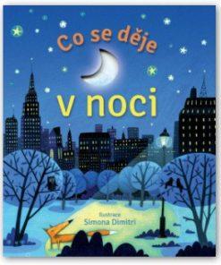 Kniha pro děti - Co se děje v noci