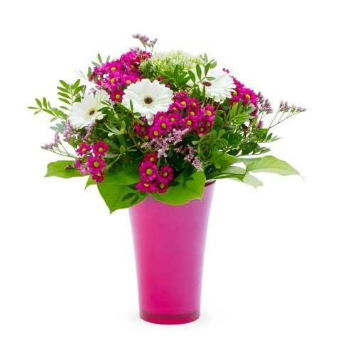 Krása květin pro každý den