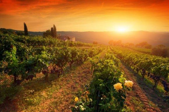 Pobyt ve Valticích spojený s degustací vína