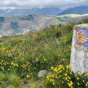 Svatojakubská pouť do Santiago de Compostela od A do Z